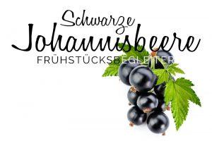 Marmelade_Fruchtaufstrich_Schwarze_Johannisbeere